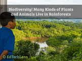 Biodiversity - Many Plants and Animals Live in Rainforests Distance Learning PPT