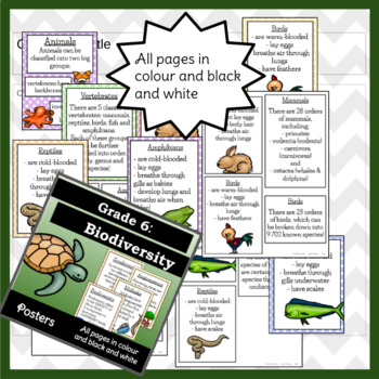 Biodiversity Posters - Anchor Charts