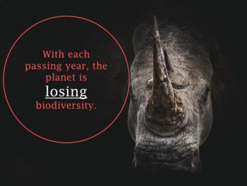Environment: Biodiversity Webquest (Environmental Science/Ecology)
