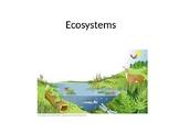 Biodiversity and Human Impact