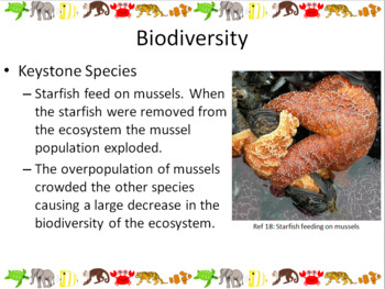 Biodiversity and Human Interaction Powerpoint Slide Show