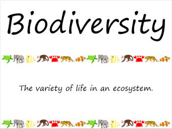 Biodiversity and Taxonomy Vocabulary Card Word Wall Bundle