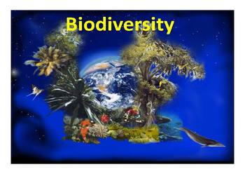 Biodiversity in Our World