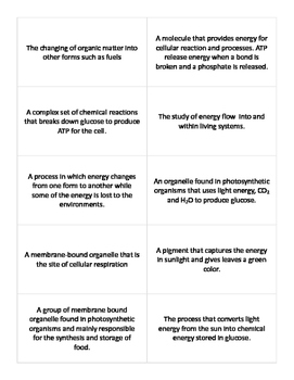 Bioenergetics Vocab Cards - Keystone Biology