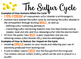 Biogeochemical Cycles Board Games