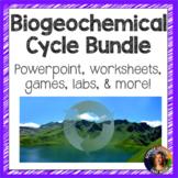 Biogeochemical Cycles Bundle