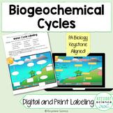 Biogeochemical Cycles Diagram Labeling: Water, Carbon, Nit