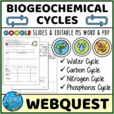 Biogeochemical Cycles Webquest - Digital and Print