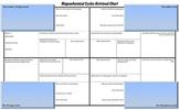 Biogeochemical Cycles Note-taking Retrieval Chart