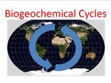 Biogeochemical Cycles PowerPoint