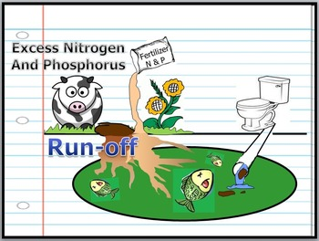 Biogeochemical Cycles, Water Cycle, Carbon, Nitrogen, Phosphorus