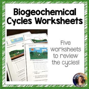 biogeochemical cycles worksheets wiildcreative. Black Bedroom Furniture Sets. Home Design Ideas