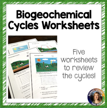 Biogeochemical Cycles Worksheets by Science Lessons That Rock | TpT