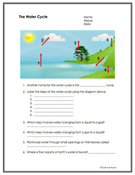 Biogeochemical Cycles Worksheets by Science Lessons That ...