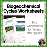 Biogeochemical Cycles Worksheets