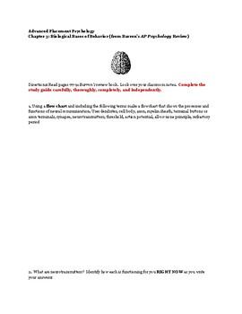 Biological Bases of Behavior Study Guide for AP Psychology