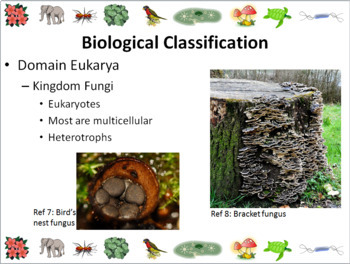 Biological Classification Powerpoint Slide Show