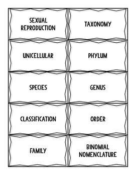 Biological Classification Vocabulary Sort