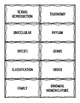 Biological Classification Vocabulary Sort and Graphic Organizer