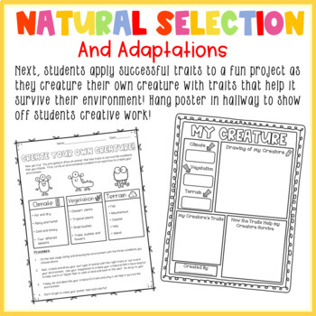 Biological Evolution: Unity and Diversity Full NGSS Unit