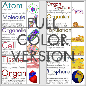 Biological Levels of Organization Hanging Poster- Ready to Print/Cut