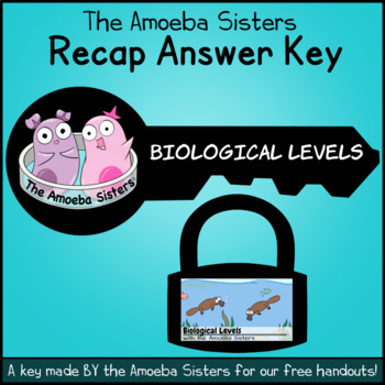 Biological Levels of Organization Recap Answer KEY by The Amoeba Sisters