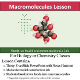 Biological Macromolecules Lesson - Menu Creation & Model Construction