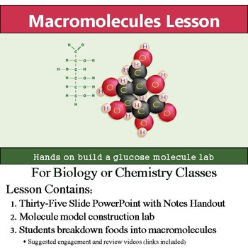 Biological Macromolecules Lesson - Menu Creation & Model C