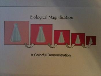 Biological Magnification Science Demonstration