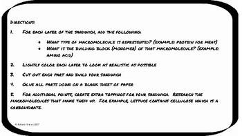 Biological Molecules Sandwich