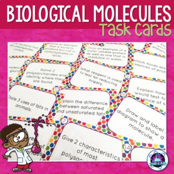 Biological Molecules Task Cards
