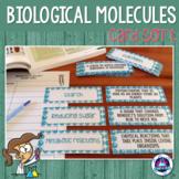 Biological Molecules Vocabulary Card Sort