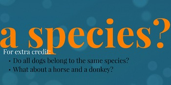 Biological Organization