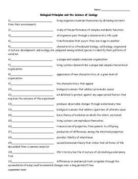Biological Principles and Zoology Vocabulary Quiz or Worksheet for Zoology