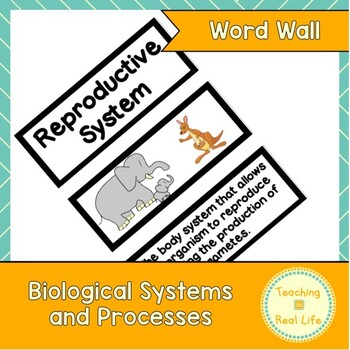 Biological Systems and Processes Word Wall/Vocabulary Cards