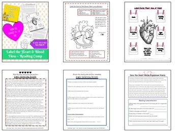 Biology 20 Introduction/ Review Circulatory System Blood flow through heart