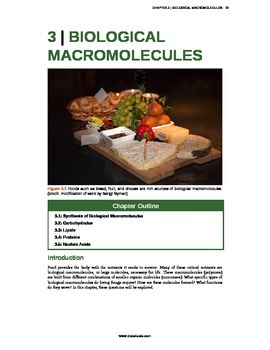 Biology - 3 - Biological Macromolecules