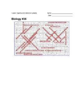 Biology #35 - Human Digestive and Endocrine Systems - Wordsearch Puzzle
