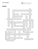 Biology #36 - Human Nervous System - Crossword Puzzle