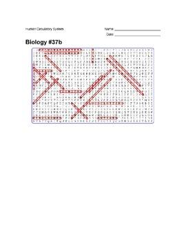 Biology #37b - Human Circulatory System - Wordsearch Puzzle