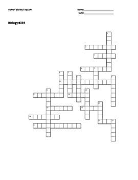 Biology #37d - Human Skeletal System - Crossword Puzzle