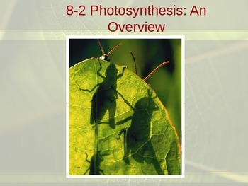 Biology 8.2 Photosynthesis Overview Fill-In-The-Blank Note