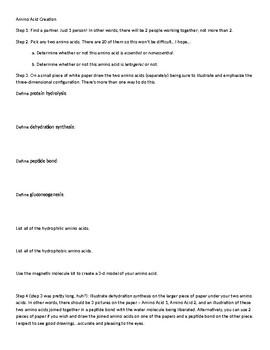 Biology - Amino Acid Creation