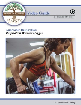 Biology- Anaerobic Respiration in the Muscles: FuseSchool Video Guide