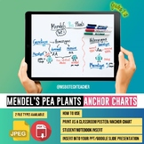 Biology Anchor Chart-Mendel's Pea Plants