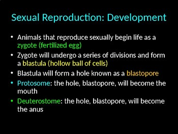 Biology! Animals: Reproduction, Nutrient Absorption, and Regulation