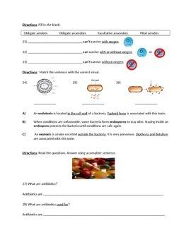 Biology: Bacteria (Visually Adapted for ELL/ESL) Summative Exam