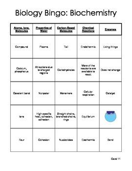Biology Bingo - Biochemistry / Chemistry of Life