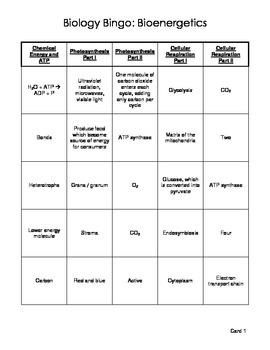 Biology Bingo - Bioenergetics - Photosynthesis and Cellula