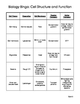 Biology Bingo - Cell Structure and Function